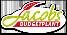 Budgetplant